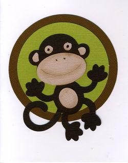 Monkey003