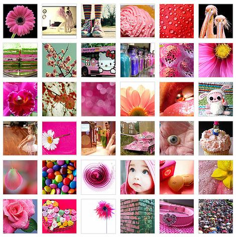 Pink_flickr